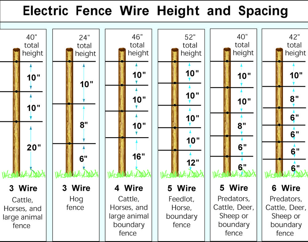 Electric Fence Wire Heights … | Pinteres…