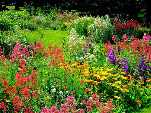 english garden foundation plants English Garden Design Elements