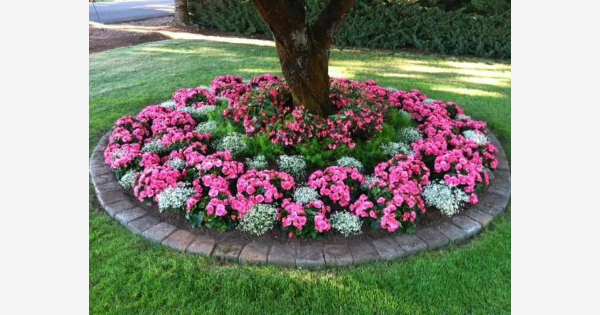 Found On Bing From Www Pinterest Com Flower Garden Design Front Yard Landscaping Beds