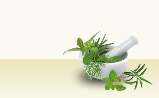 herbs have measurable nutritional value basil is an excellent source of iron potassium