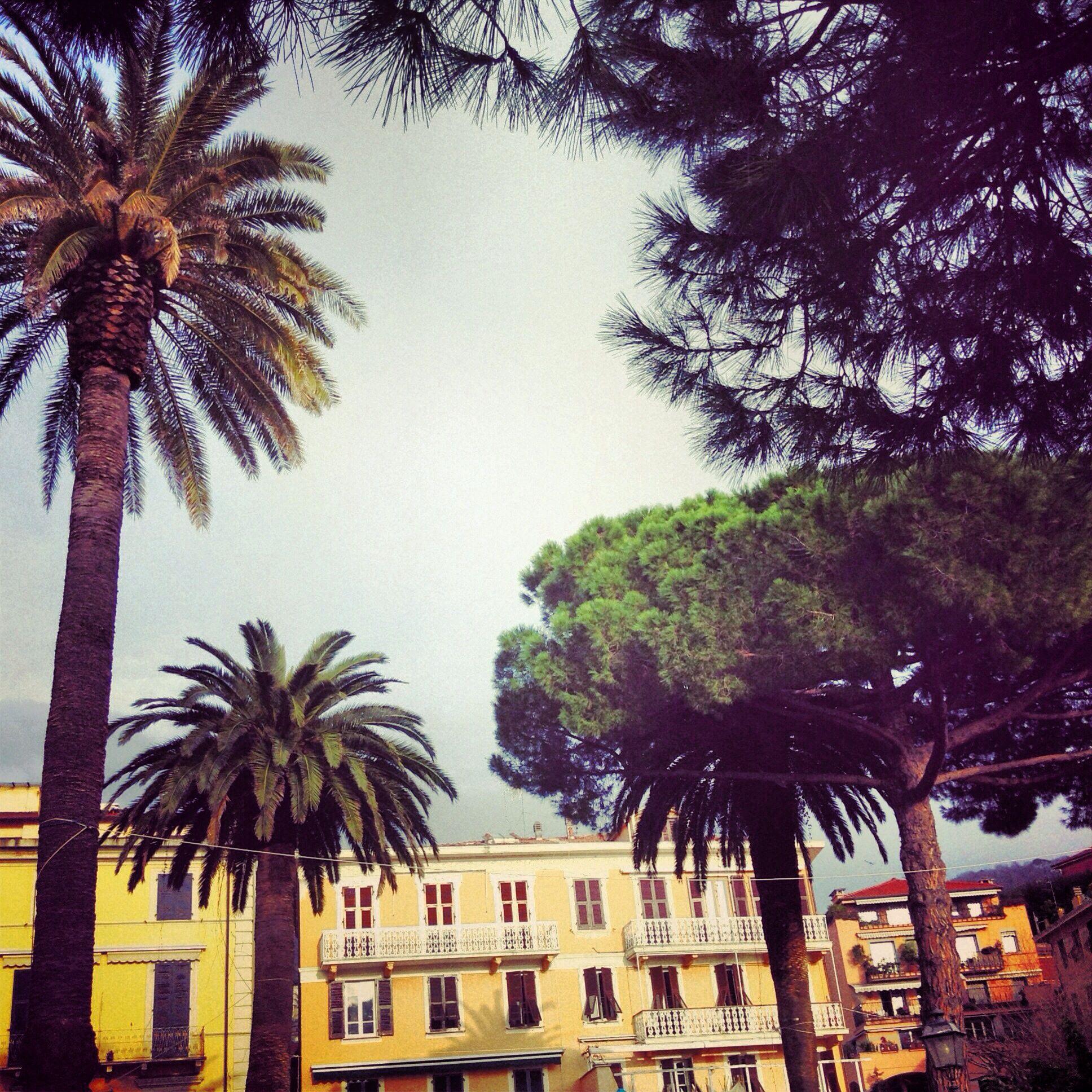 http://instagram.com/theavalist   Lerici,Liguria,Italy