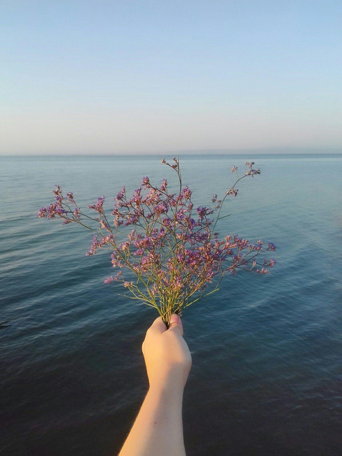 Leto More Leto Priroda I Zakaty