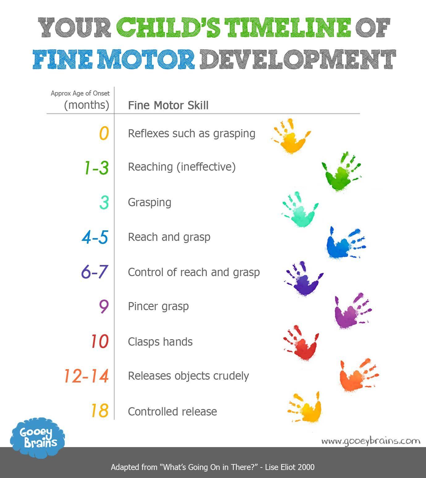 Your Childs Timeline Of Fine Motor Skills