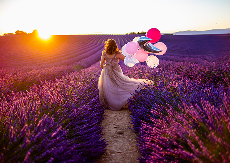 Shooting Mariage Valensole Provence Photographie Valensole Shooting Photo