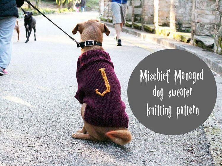 Dog Sweater Knitting Pattern Dog Sweaters Pinterest Knitting