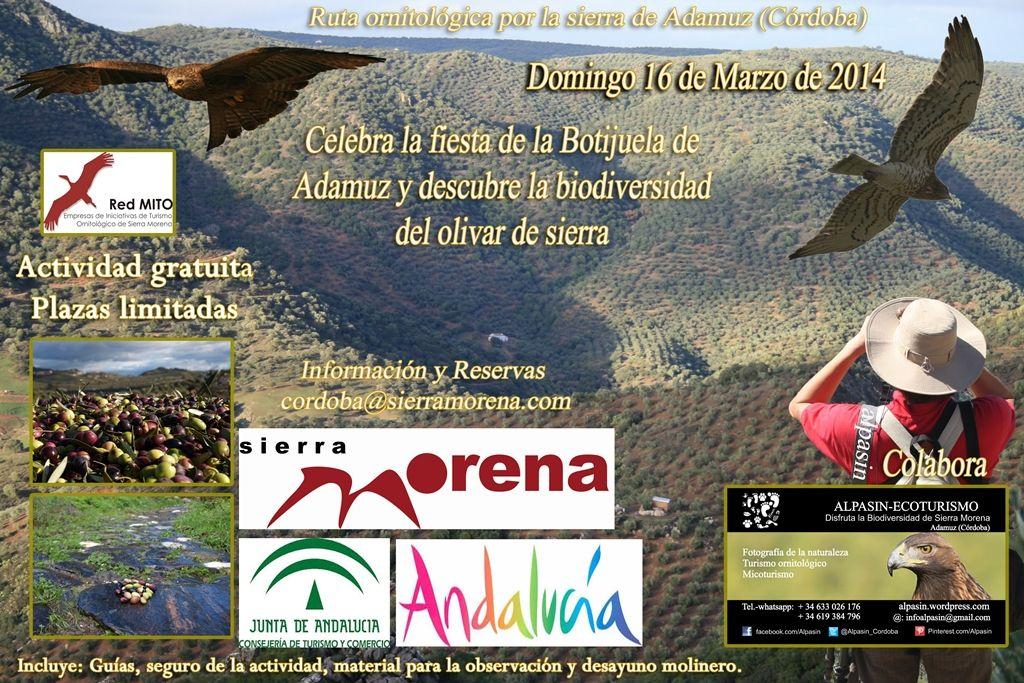 Vive una experiencia ornitológica en Sierra Morena y disfruta de nuestro aceite de olivar de Sierra....