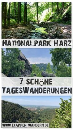 Photo of Hiking in the Harz Mountains – tours, pictures, stamps and impressions