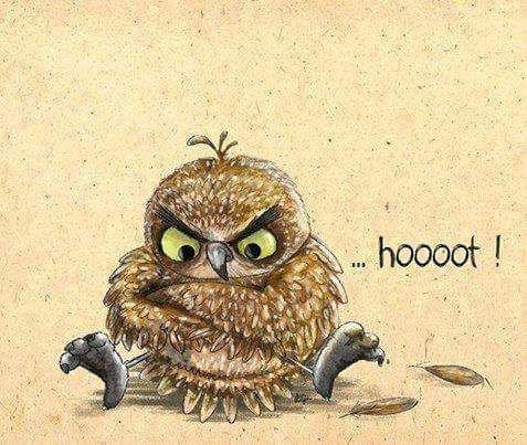 Image about art in Owls کونەپەپوو by Magic on We Heart It