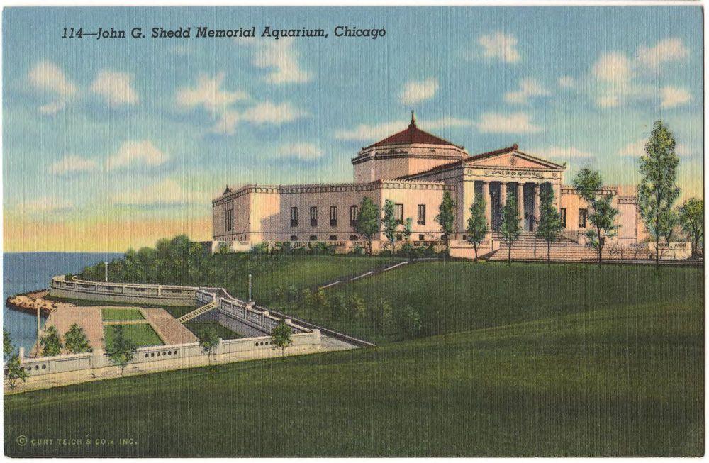 Chicago il shedd memorial aquarium in grant park 1941