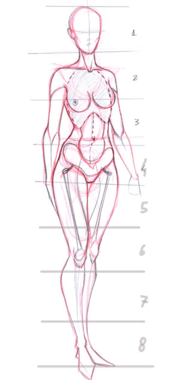 Very, very basic anatomy by Go-Dark on @DeviantArt | bodyart ...