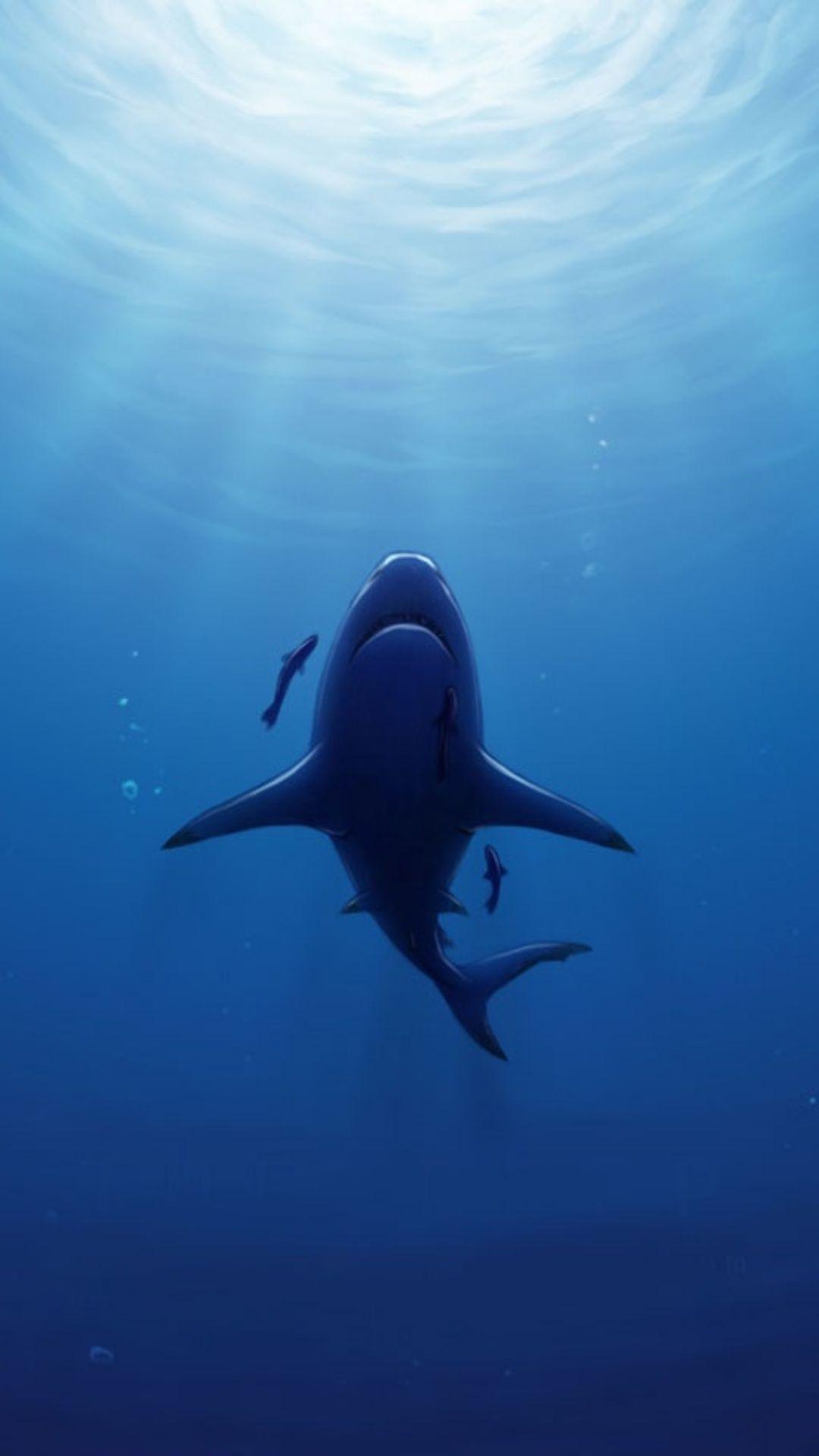 Underwater 98