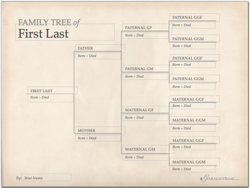 Family Tree Template Finder Free Charts For Genealogy  Genealogy