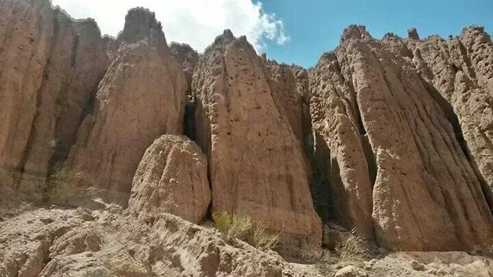 Cuevitas de loros. Quebrada de las Conchas.Argentina