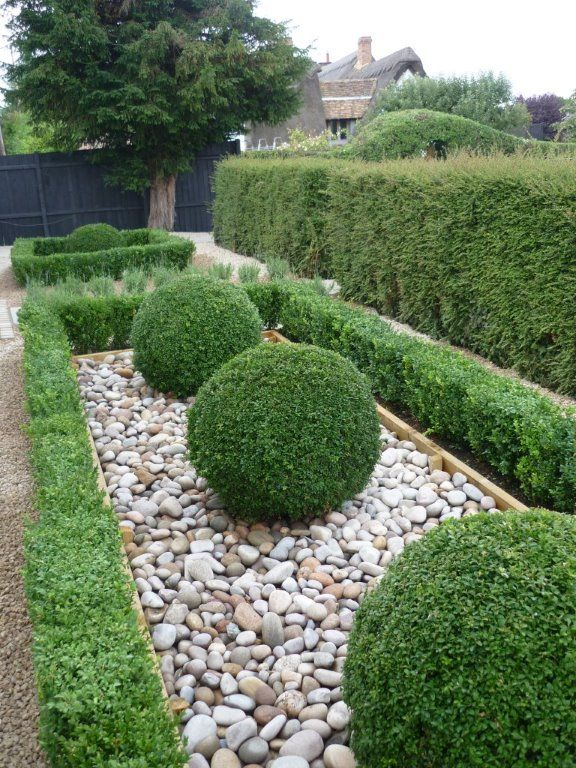 Topiary balls lillydale topping and lonicera hedge 44 McArthur