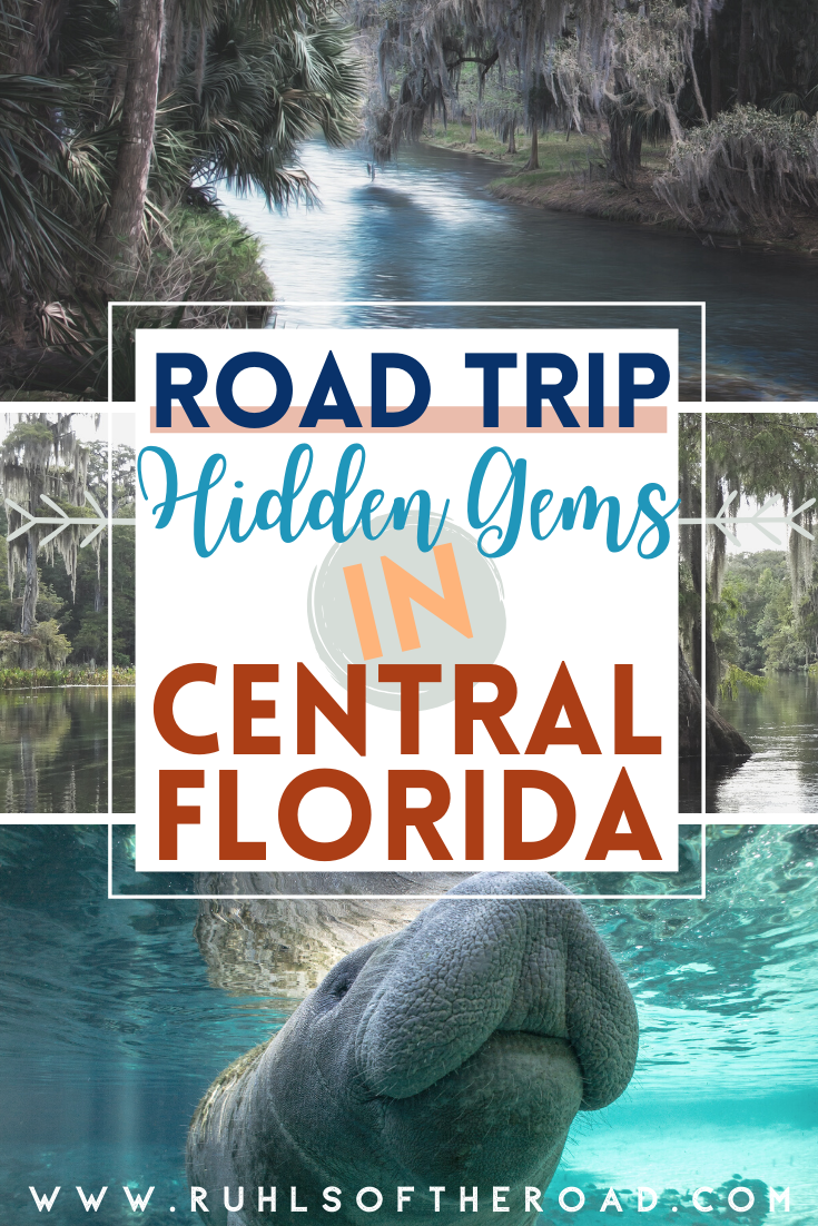 Travel Florida & road trip through the best things to do in Florida. Central Florida is full of hidden gems including Ocala Florida, snorkeling in Florida, manatees in Florida, Florida hikes, Florida adventures & more Florida fun. Vacation in Florida with these Florida ideas in the sunshine state. Things to do in Ocala Florida include beautiful natural springs with clear blue water & snorkeling in manatees. Take Florida day trips to Florida destinations on a Florida trip with these Florida ideas