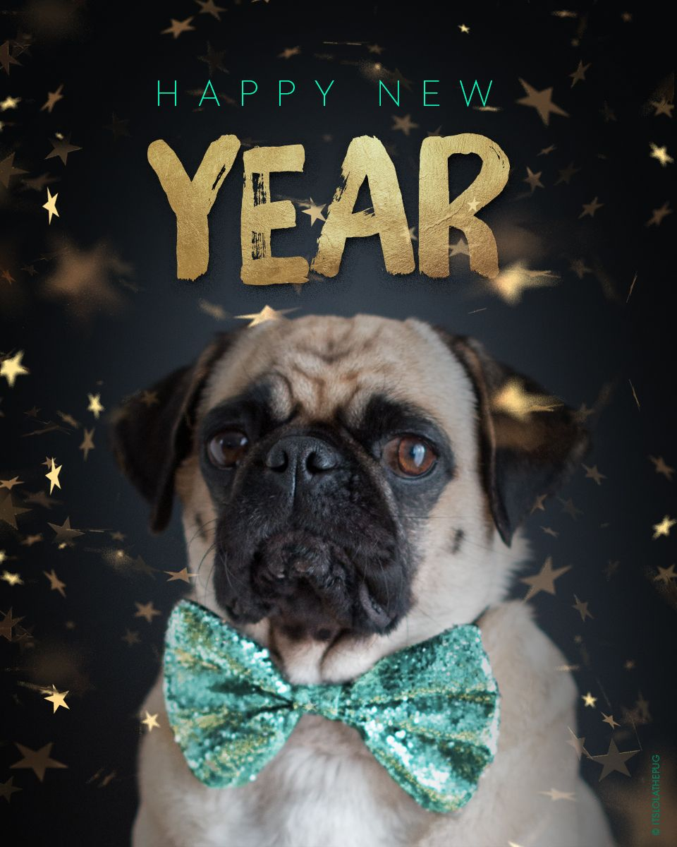 Happy New Year! I wish you an exciting, happy & joyful