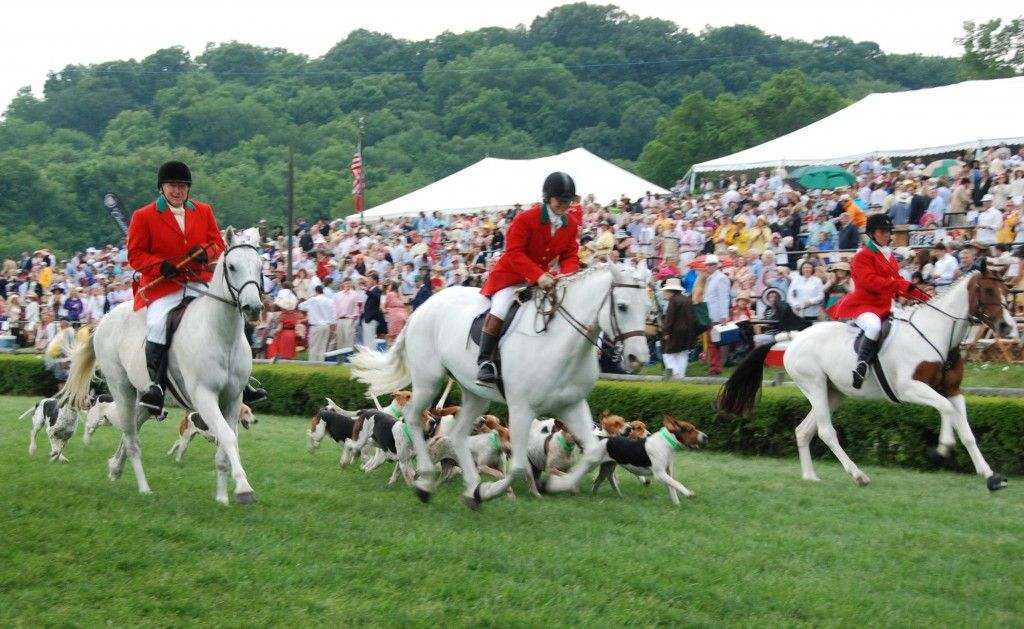 Iroquois Steeplechase Steeplechase, Tennessee