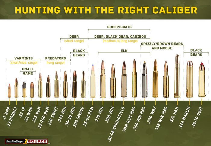 Hunting Calibers Chart With Suitable Game Listed Hunting Guns