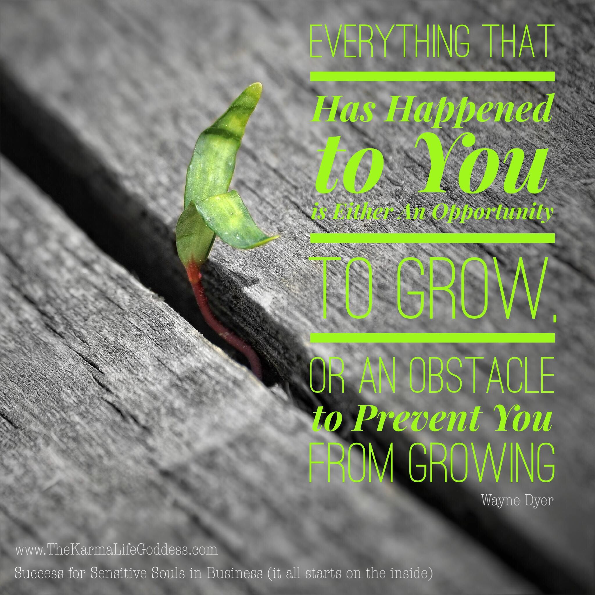 Thought-Changing Thursday: An Obstacle, Or An Opportunity to Grow? read the short article: http://www.thekarmalifegoddess.com/blog/thought-changing-thursday-an-obstacle-or-an-opportunity-to-grow/