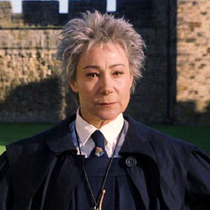 Rolanda Hooch Harry Potter Professors Harry Potter Harry Potter Characters