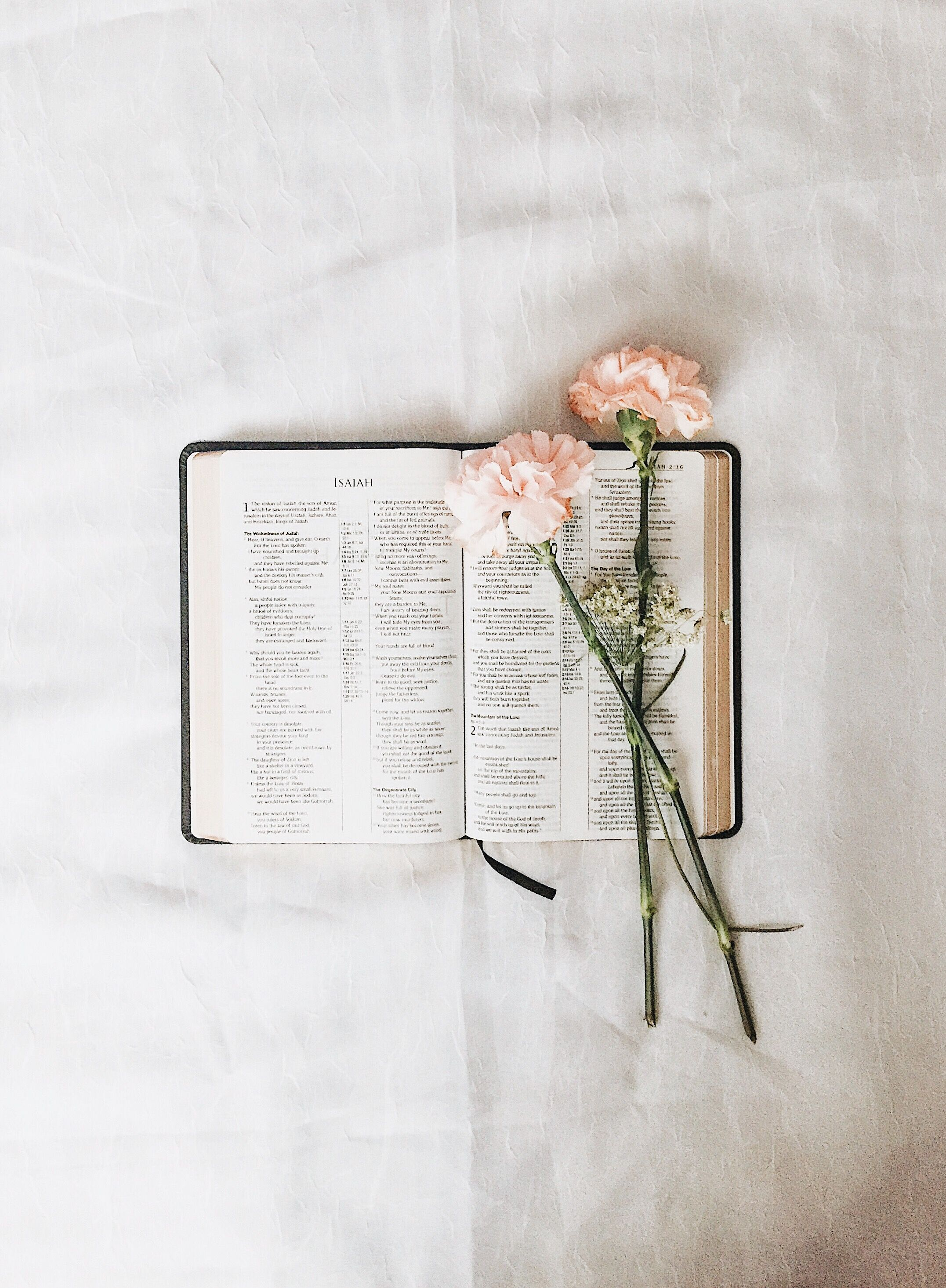 Oito Mulheres De Fe Fe Diario De Estudo Da Biblia Arte