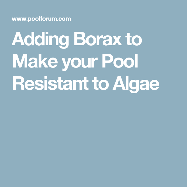 Adding Borax To Make Your Pool Resistant To Algae Paula