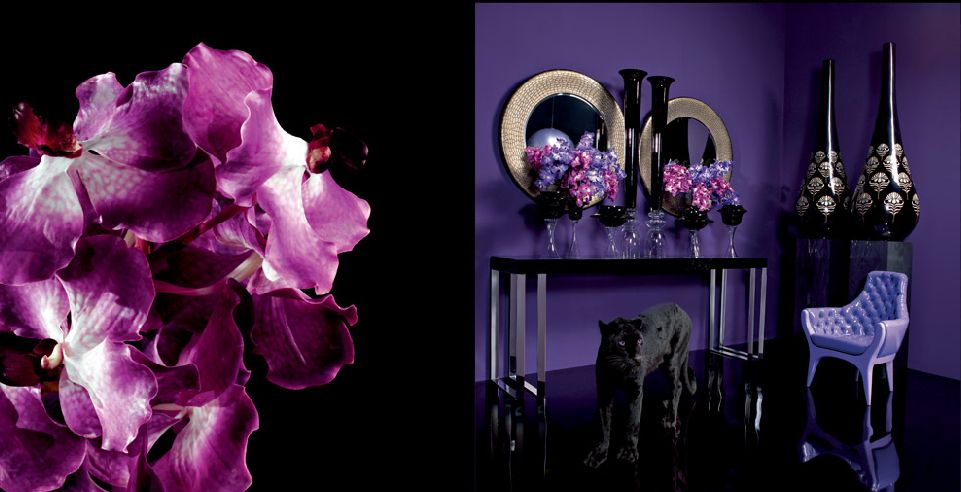 Which Brands not Miss in Maison & Objet Paris? d9237f16a2c6cda8f3482a17fb5b7de3