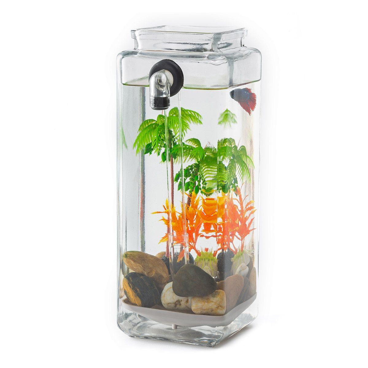 No Clean Aquarium acrylic fish tank, freshwater, no