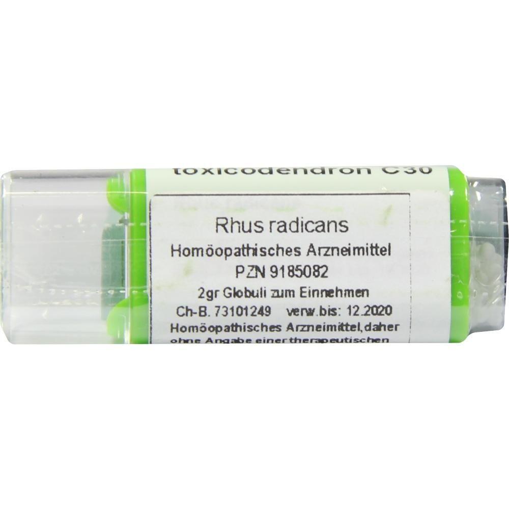 RHUS TOXICODENDRON C 30 Globuli:   Packungsinhalt: 2 g Globuli PZN: 09185082 Hersteller: Spagyros GmbH Preis: 6,25 EUR inkl. 19 % MwSt.…