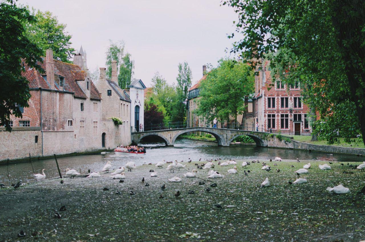 lucas-marcomini:  Brugge I Europe Backpacking Day 9 - Bruges, Belgium Instagram   Flickr