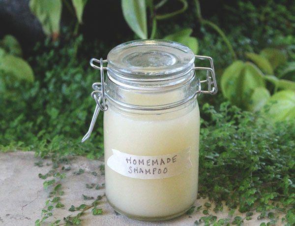 shampoing fait maison avec thermomix il est temps d arr ter le shampoing chimique et commencez. Black Bedroom Furniture Sets. Home Design Ideas