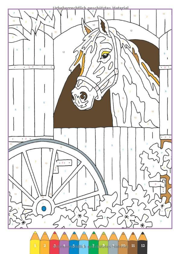 Malen nach Zahlen: Pferde: Amazon.de: Maja Wagner: Bücher | horses ...