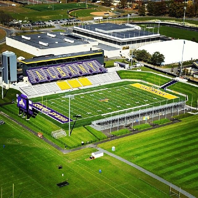 University Of Albany Great Danes College Football American