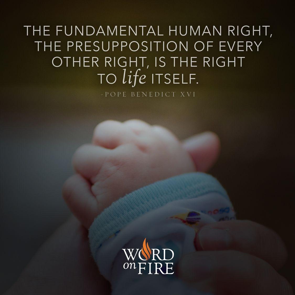 "The fundamental human right"" -Pope Benedict XVI  Fundamental"
