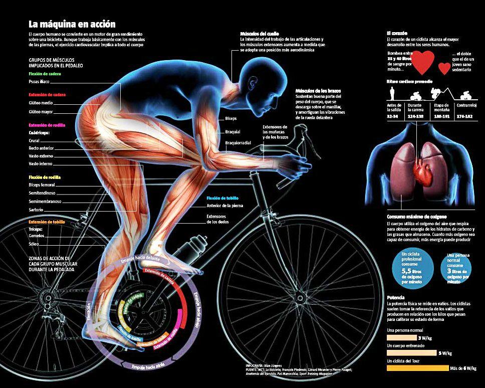 Populares Resultado de imagen para frases motivadoras de ciclismo   Diseño e  LM51