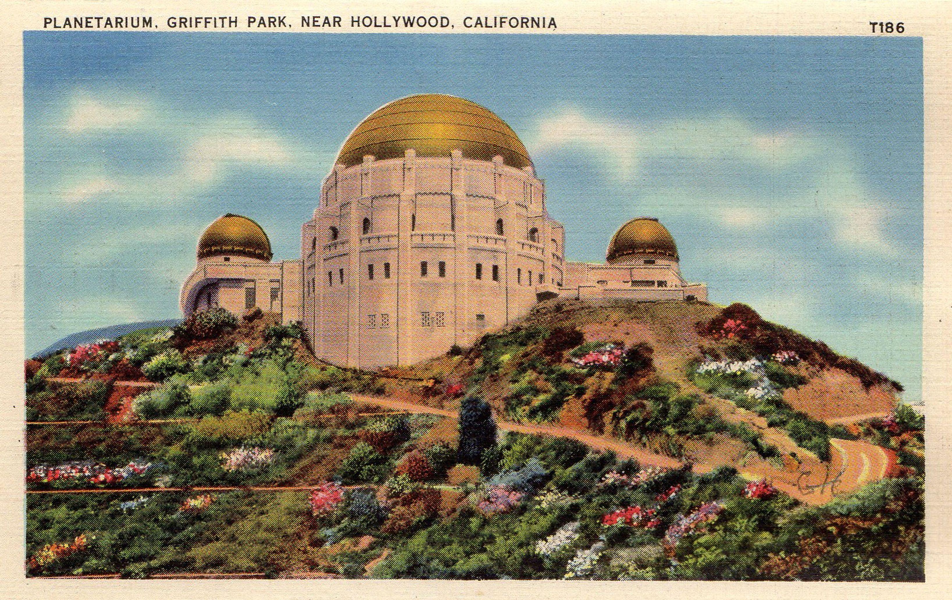 1930 S Postcard Hagins Collection California Postcard Griffith Park Vintage Los Angeles