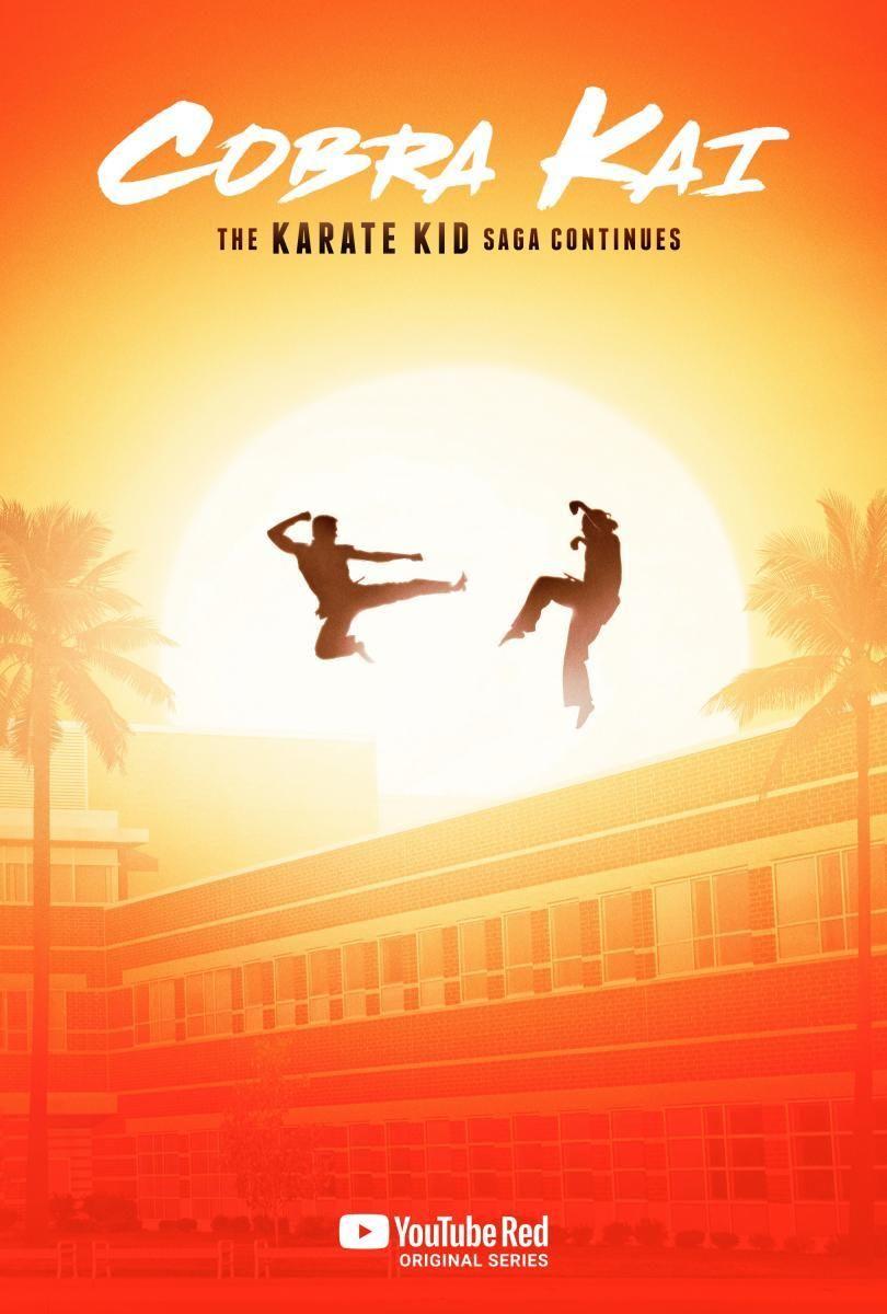 Cobra Kai Karate Kid Movie Karate Kid Karate