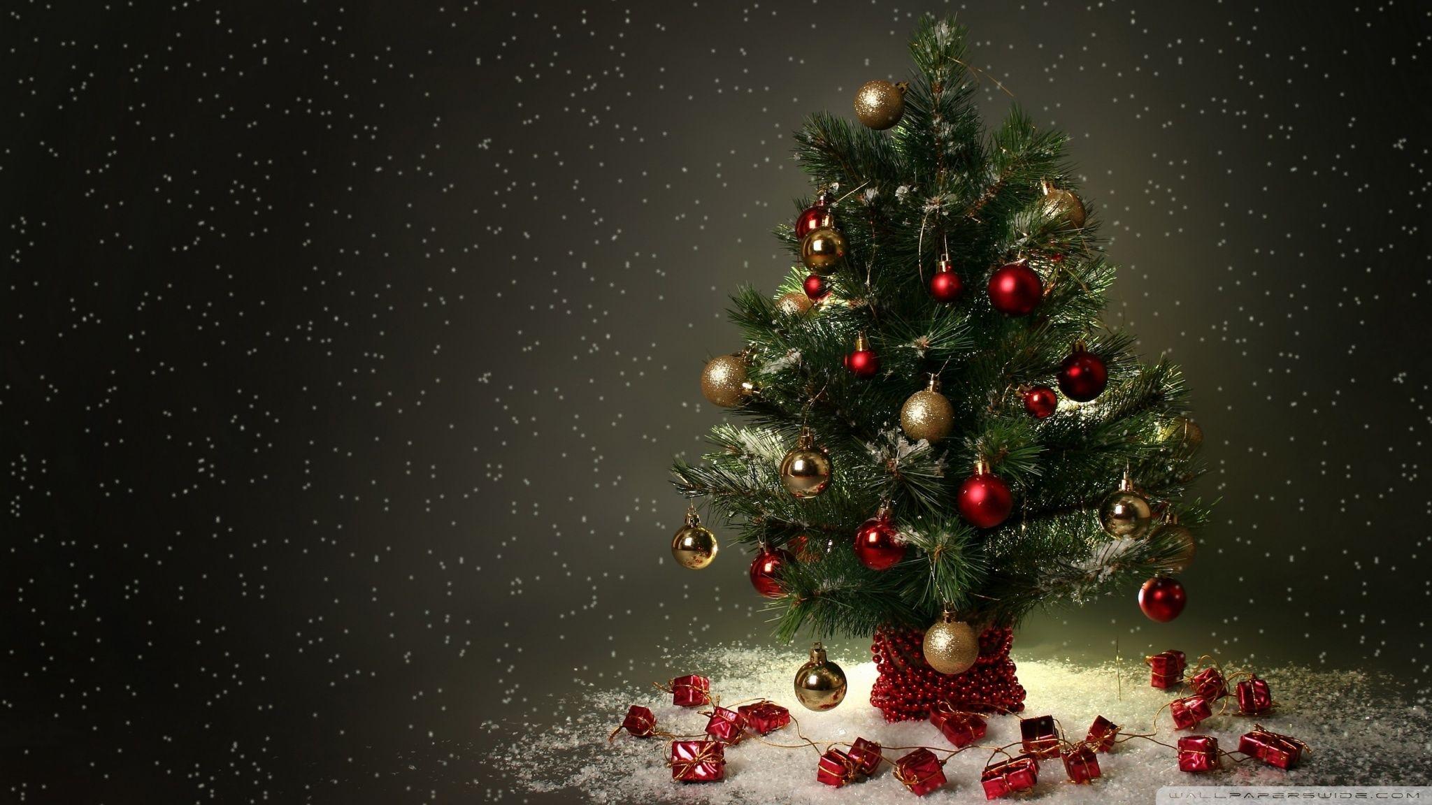 Beautiful Christmas Beautiful Christmas Tree Pictures Hd Christmas Tree Wallpaper Christmas Tree Background Christmas Tree Images
