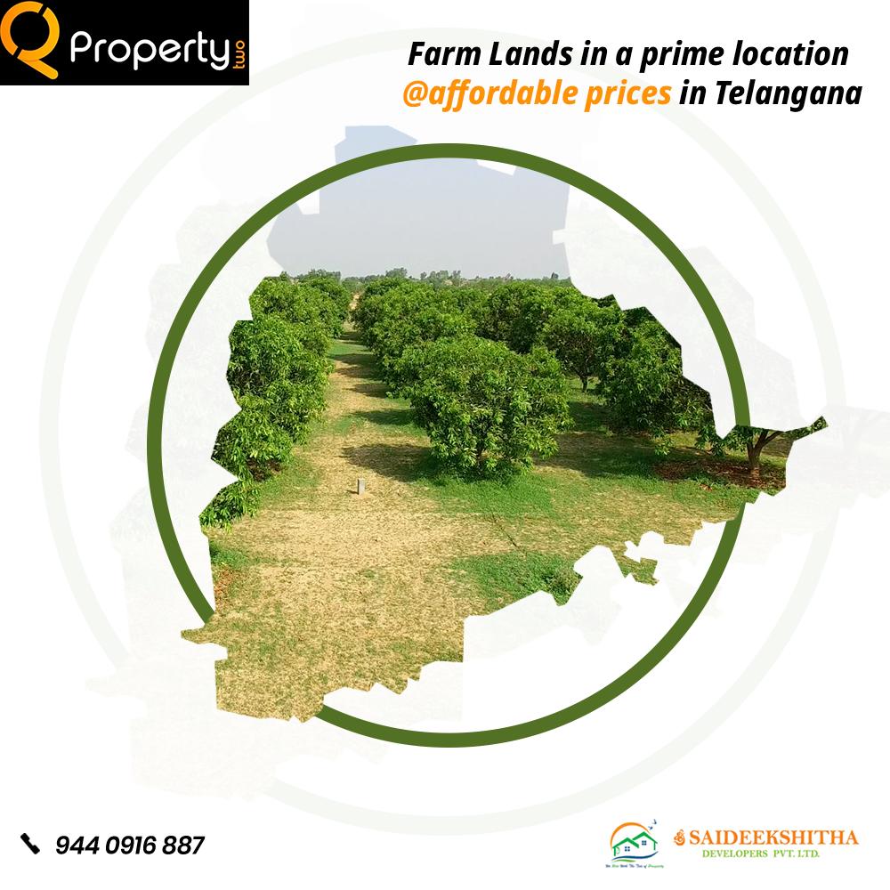 Farm lands for sale in Hyderabad Farmland, Farm, Land