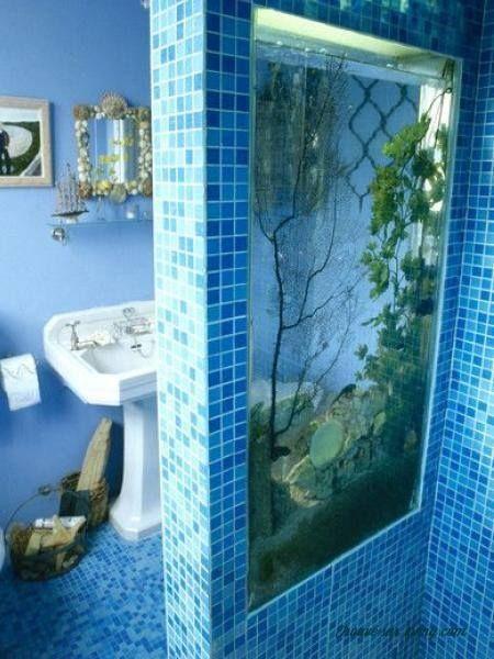 salut tout le monde   dans la plupart des cas  un aquarium se r u00e9sume  u00e0 un petit bocal pos u00e9 sur