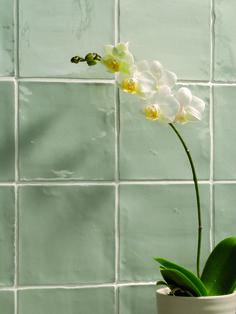 Afbeeldingsresultaat voor jade tegels