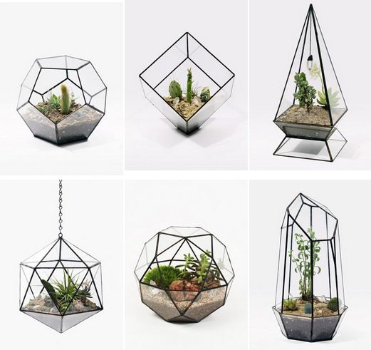 Sale Dodecahedron Large Geometric Glass Terrarium Geometric Glass