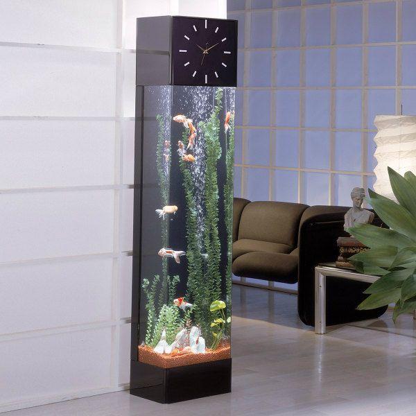Fish Tank Seems Like A Vertical