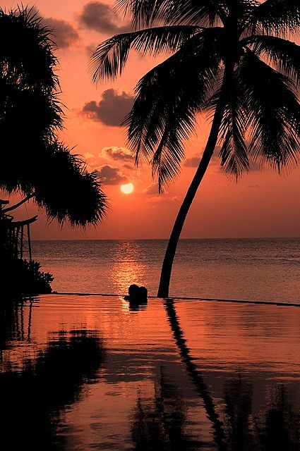 Paradise For Two Pink Sunset Vilu Reef Maldives By