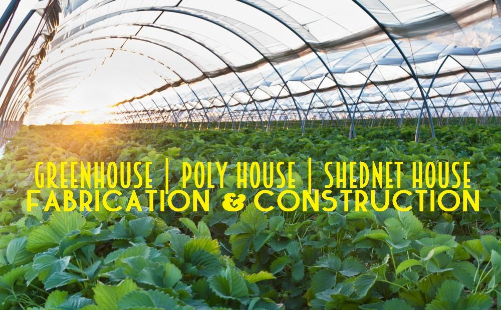 Green House Construction Cost Know with Varad Enterprise