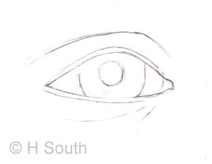 Line Drawing Step By Step : How do you draw realistic eyes drawing step outlines and eye
