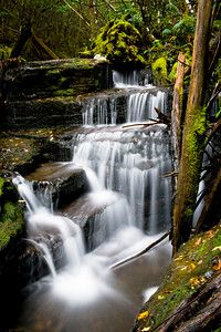 #40 - Cascade on the eastern slopes of Mt Wellington, Mt. Wellington Park, Tasmania