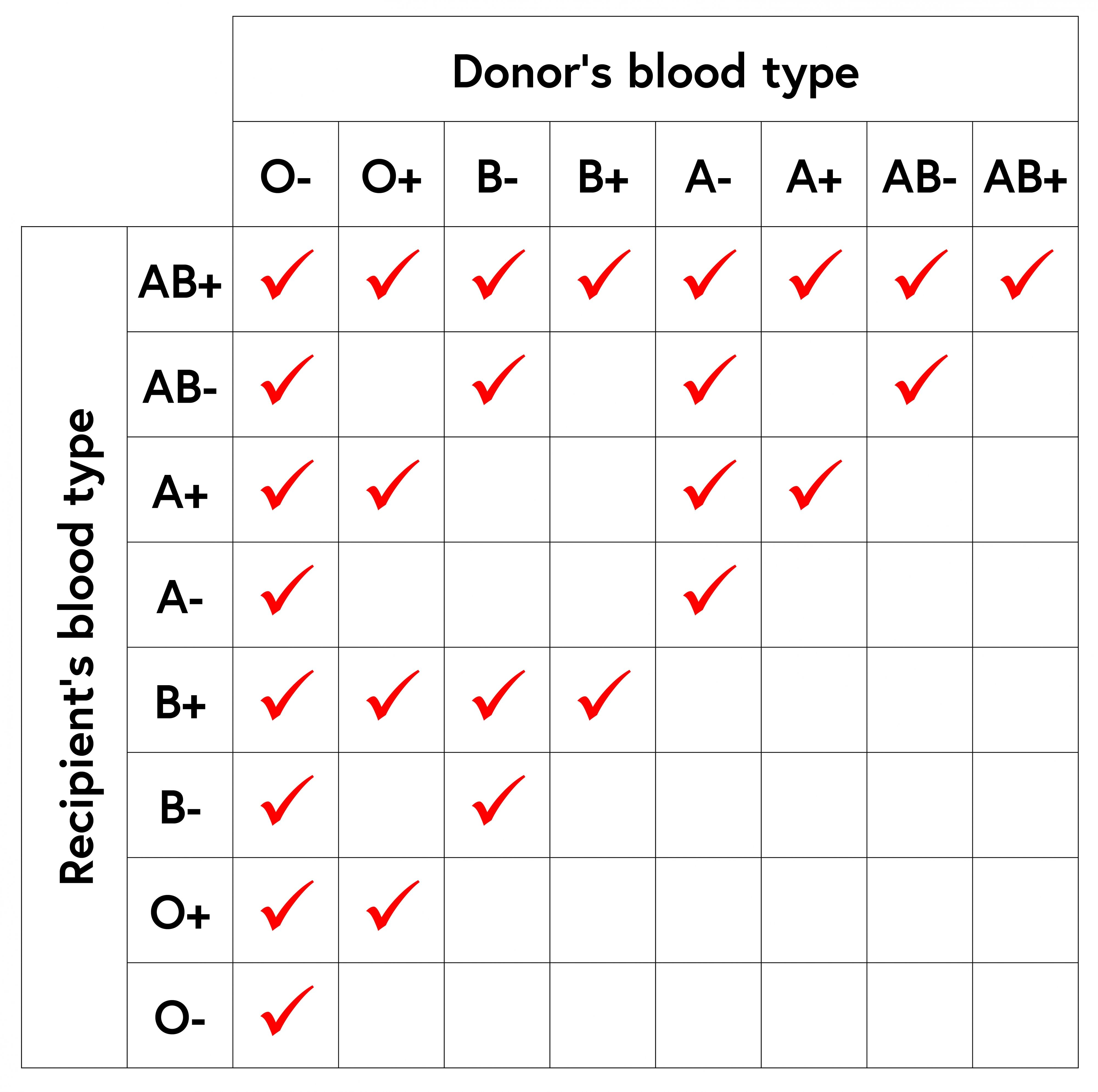 Blood Types And Transfusions Worksheet Answers