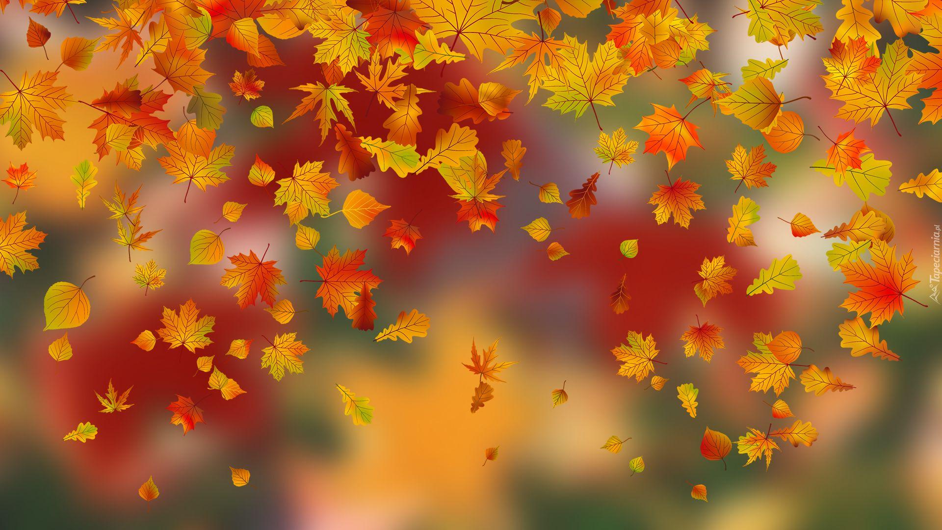 Grafika 2d Jesienne Liscie Nature Background Images Flower Images Spring Background
