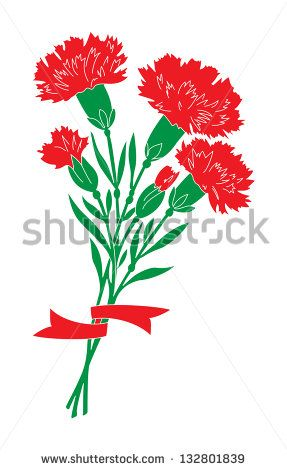 GROUP CARNATIONS